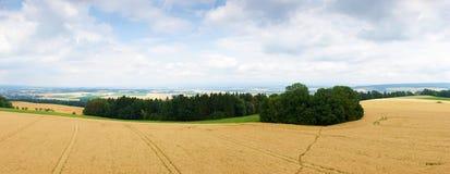 Landbouwplatteland in de Tsjechische Republiek Stock Afbeeldingen