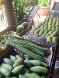 landbouwproducten in het paddelen van boten Royalty-vrije Stock Foto's