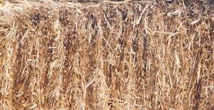 Landbouwscène, stapel van hooi Royalty-vrije Stock Fotografie