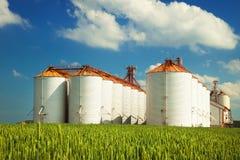 Landbouwsilo's onder blauwe hemel, op de gebieden Royalty-vrije Stock Afbeeldingen