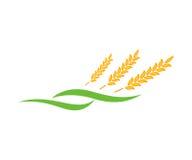Landbouwtarwe Logo Template Royalty-vrije Stock Fotografie