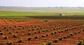 Landbouwtractor Royalty-vrije Stock Afbeelding