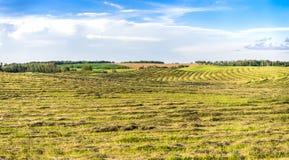 Landcape agricolo dei campi Immagini Stock