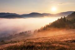Landcape con il sole, il prato, la foresta e la montagna fotografia stock libera da diritti