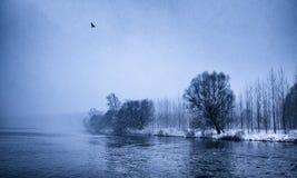 Landcape 2 do inverno Imagens de Stock