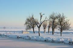 Landcape gelé Images libres de droits