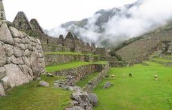 Landcape Mach Picchu w Peru Fotografia Stock