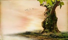 Landcape romantico Immagine Stock Libera da Diritti