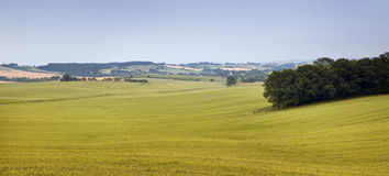 Landcape of rural area Royalty Free Stock Photography