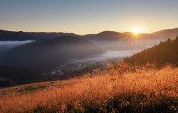 Landcape with sun, meadow, forest and mountain Stock Images