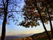 Landcape Stock Images