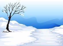 Landcape z lodem Obraz Royalty Free