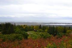 Landeind van Alaska Homerus Stock Afbeeldingen