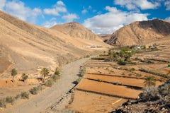Landelijk Betancuria Park, Fuerteventura, Canarische Eilanden Royalty-vrije Stock Afbeeldingen