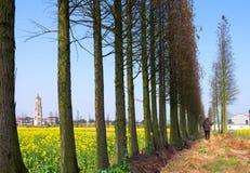 Het landelijke landschap van China stock fotografie