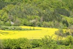 Landelijk de lentelandschap royalty-vrije stock afbeeldingen