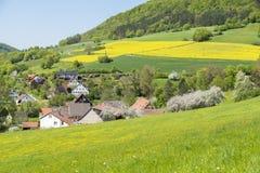 Landelijk de lentelandschap royalty-vrije stock afbeelding