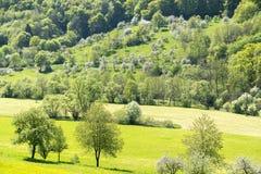 Landelijk de lentelandschap stock afbeelding