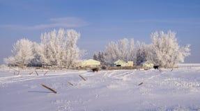 Landelijk de winterlandschap Royalty-vrije Stock Foto