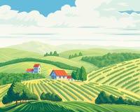 Landelijk de zomerlandschap vector illustratie
