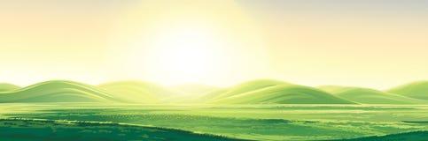 Landelijk de zomerlandschap royalty-vrije illustratie