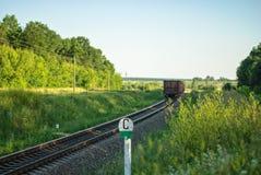 Landelijk de zomerlandschap met goederentrein Stock Foto
