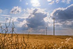 Landelijk die landschap met tarwegebied door wolk, Apulia, Italië wordt overheerst royalty-vrije stock fotografie
