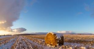Landelijk gebied met gesneden gras en de eerste sneeuw in Rusland, Ural stock foto