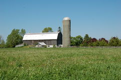 Landelijk Landbouwbedrijf stock foto