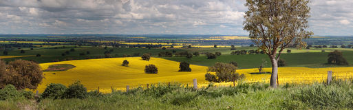 Landelijk landbouwgrondenpanorama royalty-vrije stock fotografie