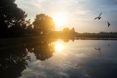 Landelijk landbouwlandschap, milieuconcept Stock Foto's