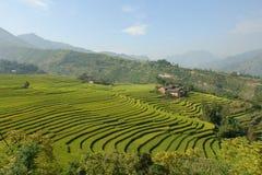 Landelijk landschap Stock Afbeeldingen
