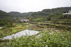 Landelijk landschap Stock Afbeelding