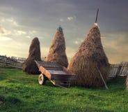 Landelijk landschap Stock Foto's