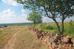 Landelijk landschap royalty-vrije stock afbeelding