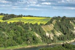 Landelijk landschap, Alberta Royalty-vrije Stock Afbeeldingen