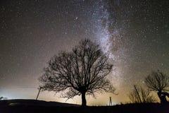Landelijk landschap bij nacht Donkere bomen onder zwarte sterrige hemel met Melkwegconstellatie royalty-vrije stock foto's