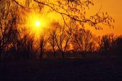 Landelijk landschap bij zonsondergang Stock Afbeeldingen
