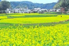 Landelijk landschap in China Royalty-vrije Stock Afbeeldingen
