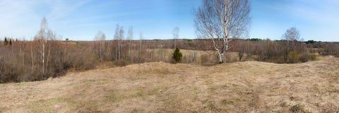 Landelijk landschap in de vroege lente Stock Fotografie