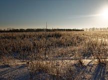 Landelijk landschap in de winter Stock Afbeeldingen