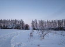 Landelijk landschap in de winter Stock Afbeelding