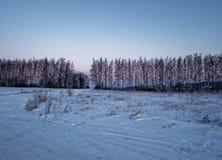 Landelijk landschap in de winter Royalty-vrije Stock Foto's