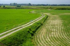 Landelijk landschap langs het Po fietspad Stock Afbeelding