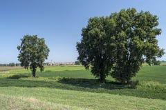 Landelijk landschap langs het Po fietspad Stock Foto