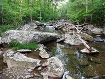 Landelijk Landschap in Maryland Royalty-vrije Stock Foto