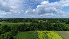 Landelijk landschap met een mooie hemel op een de zomerdag, Rusland stock footage