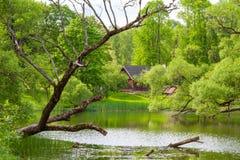 Landelijk landschap met etnisch huis stock afbeeldingen