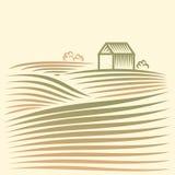 Landelijk landschap met gebieden en huis vector illustratie