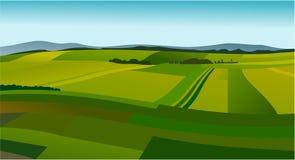 Landelijk landschap met groene gebieden vector illustratie
